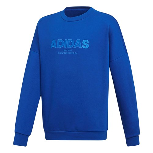 Adidas sweatshirt junior